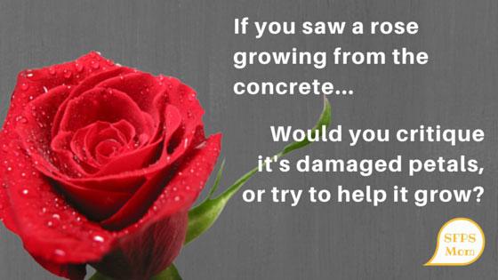 Rose-in-concrete